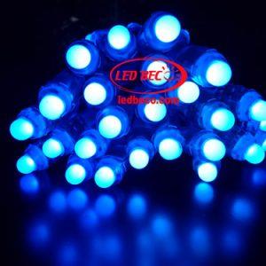 LED F8 Đế 12 Đơn Sắc