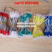 led-lien-day-f5-senyang