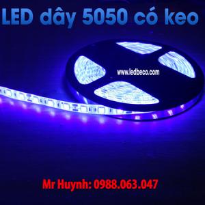 LED CUỘN