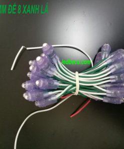 Led đúc 5mm đế 8 màu xanh lá